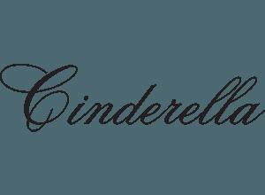 pioneer-valley-ballet-cinderella-suite logo